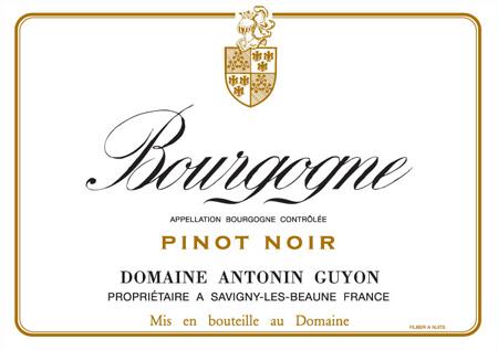 bourgogne-pinot-noir1.jpg