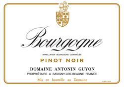 bourgogne-pinot-noir2.jpg